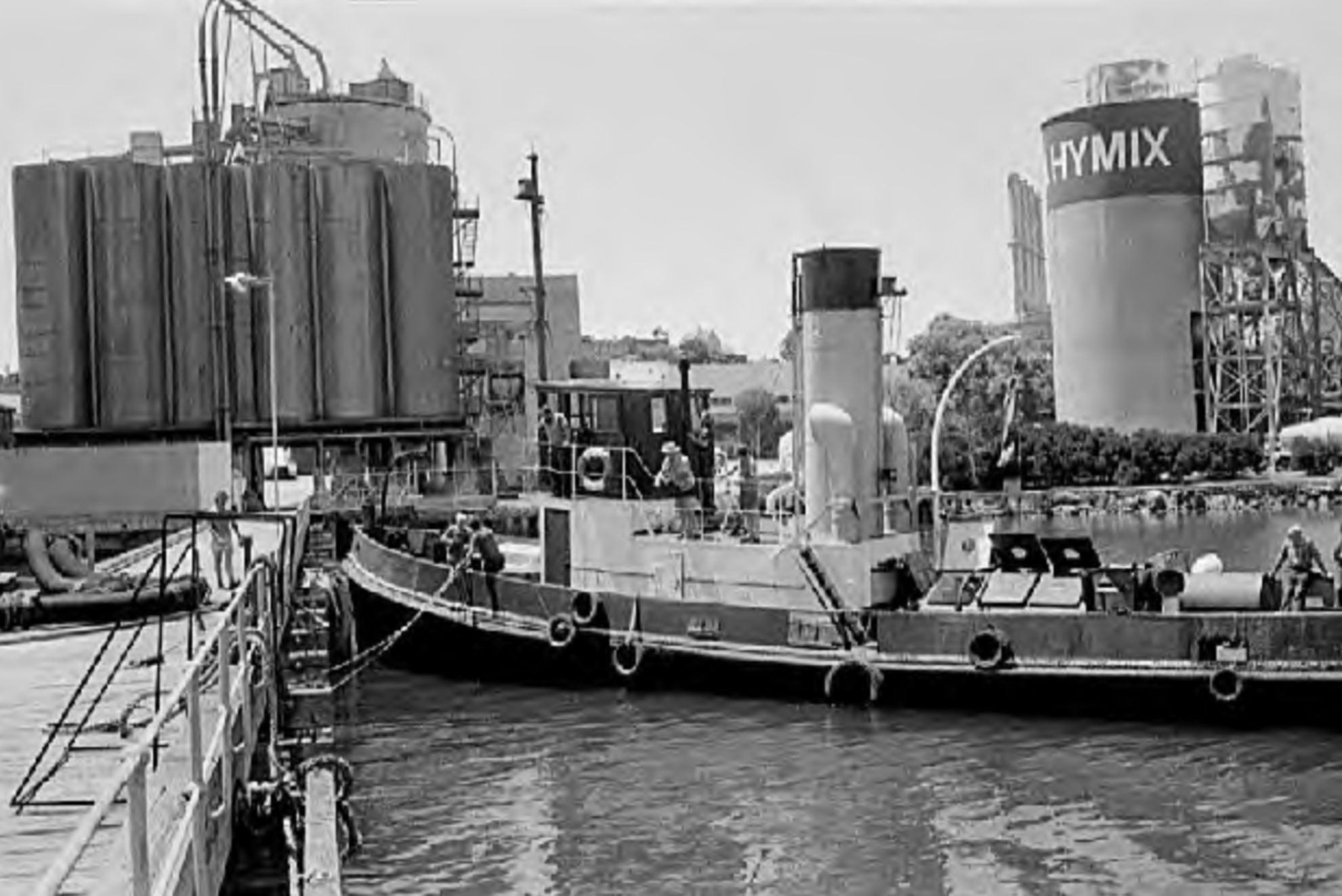 Wattle at Blackwattle Bay 1979, Graeme Andrews Collection